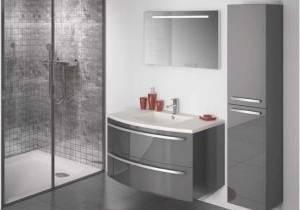 tout effacer · Idée de décoration pour une grande salle de bain minimaliste avec un placard à porte plane